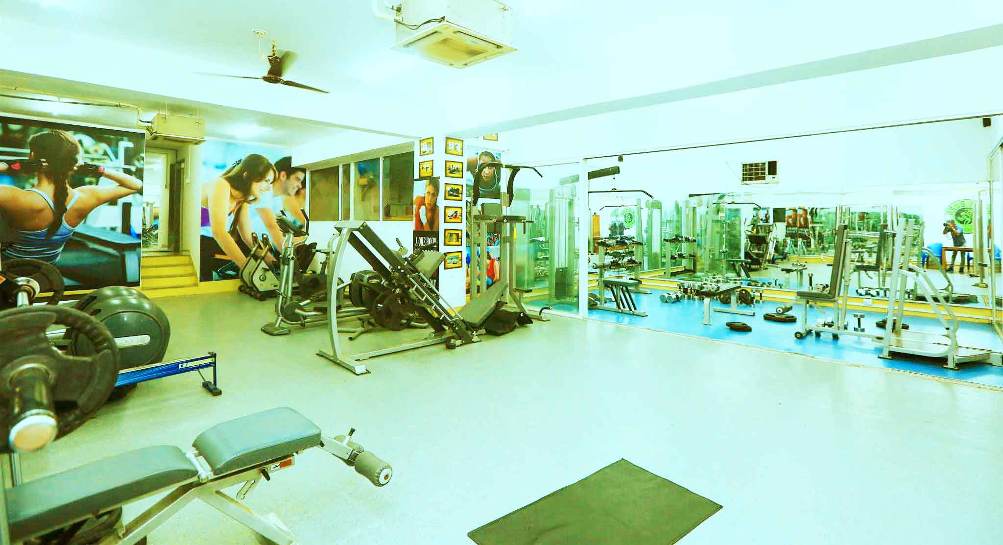 Gym & Fitness Equipments